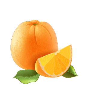 illus orange